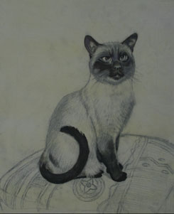 Cat Painting Stage 3