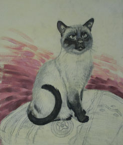 Cat Painting Stage 4
